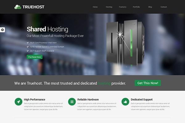 Truehost - Responsive HTML 5 Hosting Template