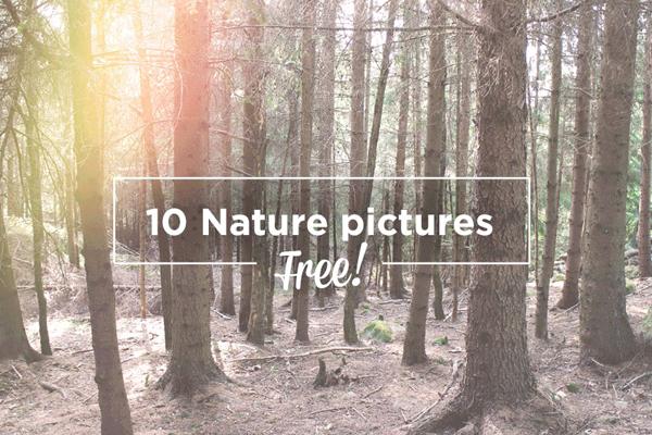10 FREE NATURE PHOTOS