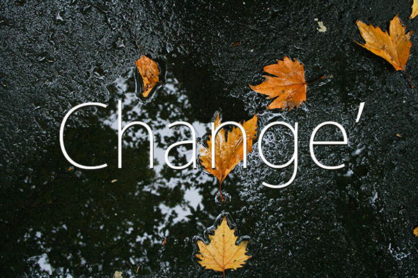 9 Autumn leaves texture